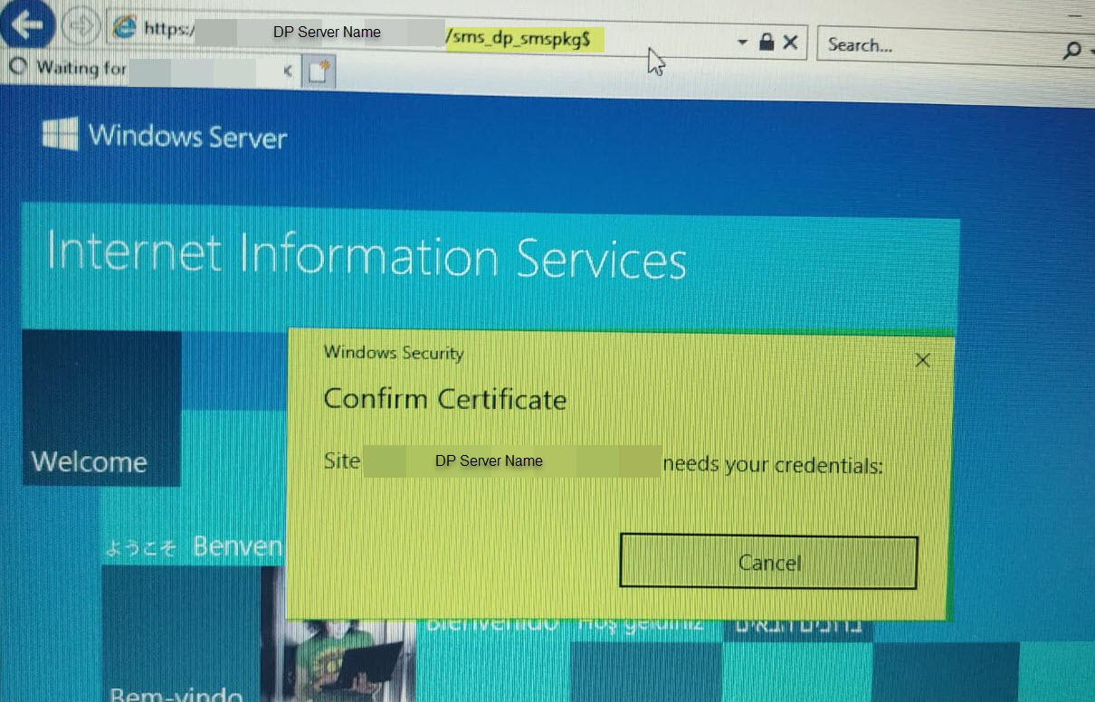 Error sending DAV request HTTP code 500 status Internal